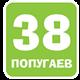 МФ 38 попугаев