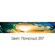 КУХОННЫЙ ФАРТУК «ПРИРОДА» (207), (ХДФ, АБС)